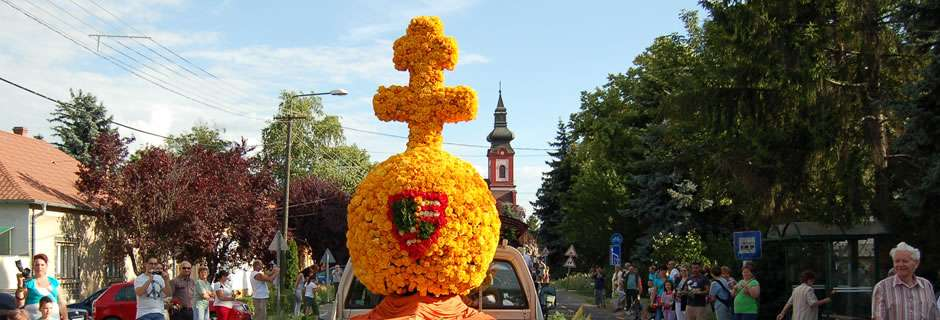 Szőregi Rózsaünnep - Szőreg, a rózsák hazája