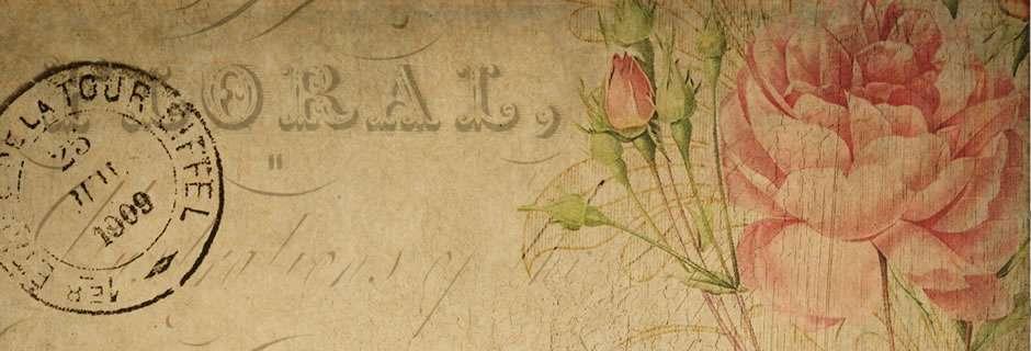 Szőregi Rózsaünnep - Kapcsolat
