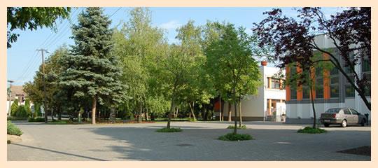 helyszin-2012-rozsaktere