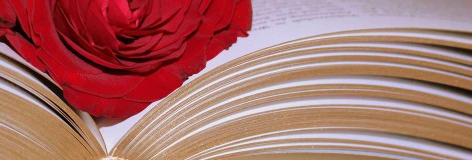 Szőregi Rózsaünnep - Adatkezelési nyilatkozat